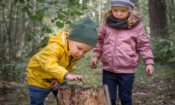 Toddler children during Parent-Child class exploring the outdoors