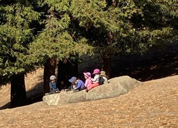 small children gathered under a tree